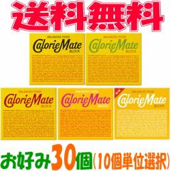 【送料無料】大塚製薬 カロリーメイトブロック 4本タイプ お好み30個(10個単位選択)【イーコンビニ】