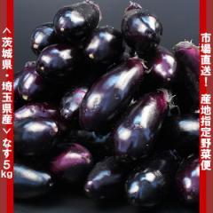 産地指定どっさり野菜5kg[茨城県、埼玉県産]キズ有りなす5kg/やさい・くだもの/ナス/茄子(gn)