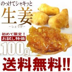 【送料無料】ご飯のお供に【のっけてシャキッと生姜】100g[ご飯、おにぎりの具、煮魚、湯豆腐など]