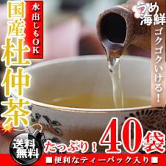 ゴクゴク飲める♪国産 杜仲茶 ティーバッグ 1袋 40袋(20袋×2個) 水出し もできます/送料無料/とちゅう茶/健康茶