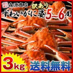 送料無料 【業務用】姿ずわいがに 3kgセット(5〜6尾)《※冷凍便》_蟹_カニ_かに_ズワイガニ