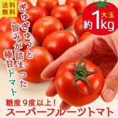トマト 茨城県産 スーパーフルーツトマト 約1kg 糖度9以上保証  送料無料 とまと 高糖度
