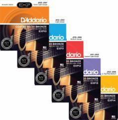 Daddario/アコースティック弦 EXP Coated 80/20 Bronze【ダダリオ/EXP10・EXP11・EXP12・EXP13・EXP14】