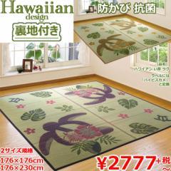 い草 カーペット ラグ 3畳 『 ホヌ ハワイアン い草ラグ 』 176×230cm ハイビスカメ