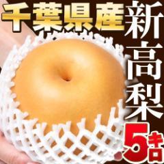 【送料無料】新高梨 日本一の梨の産地千葉県から世界一巨大な梨 5kg(5〜8個) ナシ 梨 なし フルーツ