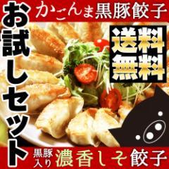 父の日 早割 鹿児島県産 黒豚入り かごんま餃子 濃香しそ餃子 36個入り(18個入り×2パック) 送料無料 ギョウザ 食品 訳あり おつまみ