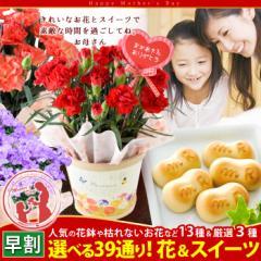母の日 ギフト 花 送料無料 花鉢など13種から選べ...