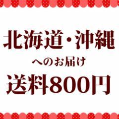 北海道・沖縄へお届け 送料分【送料】【送料800円】