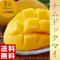 《送料無料》タイ産マンゴー ナムドックマイ 3玉(合計約900g) ※常温 ○