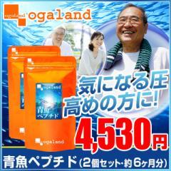 ■即納■お徳用青魚ペプチド(2個セット・約6ヶ月分)3150円以上送料無料 しょうが イワシ 健康ケア DHA EPA カルシウム