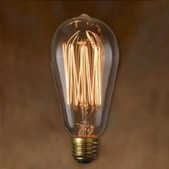 エジソンバルブ シグネチャー Lサイズ  40W E26 おしゃれ 電球 / 裸電球 / 照明 間接照明 / インテリア