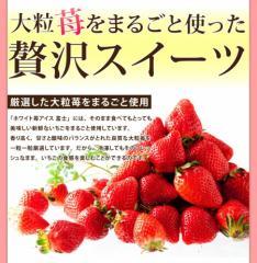 """これもオススメ""""◆【新生活】フルーツ◆ホワイトチョコ&練乳アイス ホワイト苺]/スウィーツ/果物/送料無料(90_sweets-ichogo)"""