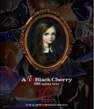 ◆初回仕様[取寄せ]★応募シリアル[3]封入★Acid Black Cherry Blu-ray【2015 arena tour L−エル−】16/3/16発売