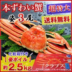 送料無料 【超特大】高級カナダ産 ボイル済み 姿ずわい蟹 3尾セット約2.5kg!《※冷凍便》 _ズワイガニ_カニ_かに_がに_