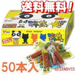 【●お取り寄せ】●送料無料 ヤガイ おやつカルパス 50本入