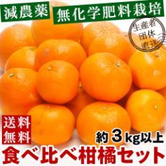 愛媛県産 減農薬 特別栽培 柑橘詰め合わせ セット 約3kg 送料無料(お試しセット かんきつ 柑橘 蜜柑 ミカン 特産品 名物商品 )