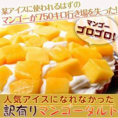 ≪送料無料≫人気アイスになれなかったマンゴーたっぷり使用!『訳ありマンゴータルト』1ホール(直径約15cm) ※冷凍 ○