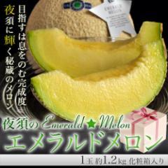 《送料無料》『夜須のエメラルドメロン』 高知産 1玉 約1.2kg ※常温 ☆