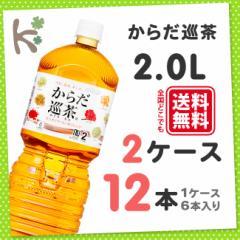 【kilakila*キラキラ】【2ケースセット】からだ巡茶2.0LPET (1ケース 6本入り×2)12本 2l 2.0l 2.0L 2リットル からだめぐりちゃ からだ