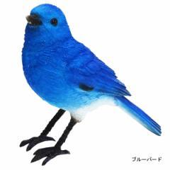 バーディ ビル ブルーバード レッドバード 小鳥のオブジェ 置物 インテリア / 幸せの青い鳥