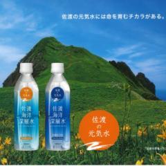 ◆【新生活】◆佐渡海洋深層水(中硬水)/(500mlペットボトル)×24本/水/食品/送料無料(deepseawater-300)