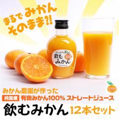 【みかんジュース】早和果樹園 飲むみかん 200ml×12本入り【ストレート】【果汁100%】