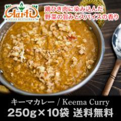 【送料無料】キーマカレー(250g×10個)神戸アールティー インドカレーの定番!自家製スパイシーミンチで食欲増進!【インドカレー】