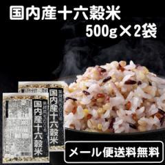 【メール便送料無料】国内産十六穀米 業務用500g×2袋★もち麦配合 国産 雑穀