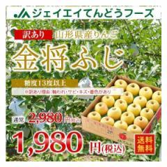 【JAてんどう共選品】 訳あり 山形県産 りんご『...
