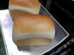 奇跡の30年自家製天然酵母炒り子食パン.。リンデンバウムだけしか焼けない究極のオリジナル食パンです。食べてみてください。