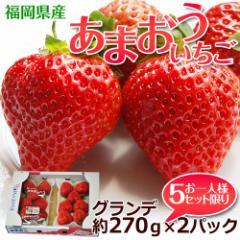 福岡産 あまおういちご G(グランデ) 約270g×2パック ※冷蔵 ☆