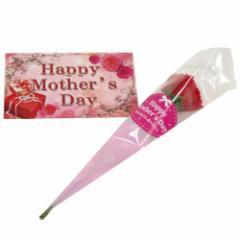 ミニカーネーション(造花)&母の日カード セット  CARNATIONSET