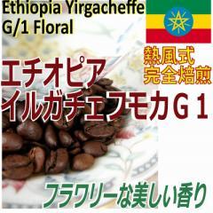 【レギュラー珈琲豆】エチオピア イルガチェフモカG1 お試し100g/ハイロースト/フローラルな香り