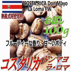 お試し【レギュラー珈琲豆】コスタリカ ドンマヨ ラ・ロマ農園FW 100g/フルーティーな香りとクリーミーな後味/シティロースト
