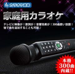 家庭用カラオケ カラオケ道場 DCT-300 300曲内蔵 録音機能