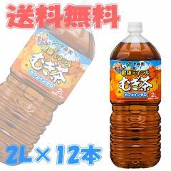 【送料無料】伊藤園 健康ミネラルむぎ茶(麦茶) 2L 6本入×2ケース(12本) 【イーコンビニ】