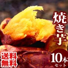 送料無料 人気焼き芋10本セット 国産 紅はるかの焼きいも