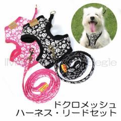 【メール便送料無料】ドクロメッシュハーネス・リードセット【犬用品・お散歩・DOG・首輪】