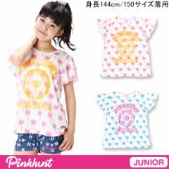 2/5一部再販 アウトレットSALE50%OFF PINKHUNT_パームツリー総柄Tシャツ-キッズジュニアベビードールBABYDOLL-6126J