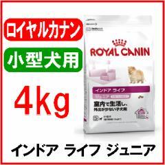 ロイヤルカナン インドア ライフ ジュニア 4kg(送料無料)