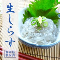 【静岡県駿河湾産】冷凍生しらす 250g これが本物の生しらすの味!【静岡県内加工】