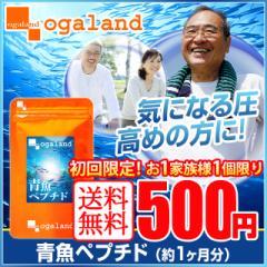 ■初回限定■青魚ペプチド(約1ヶ月分)送料無料 お一家族様1個まで 500円 イワシ しょうが 健康ケア DHA EPA