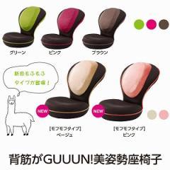 【送料無料】ストレッチ&リラックス、14段階リクライニング『背筋がGUUUN 美姿勢座椅子』