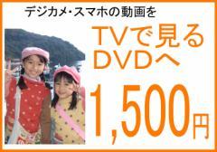 テレビで見るDVD