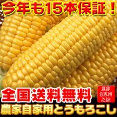 とうもろこし 農家自家用  ゴールドラッシュ 15本セット 送料無料 クール便 国産 野菜(gc)