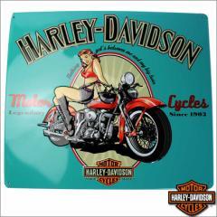 ハーレーダビッドソン Harley-Davidson サイン 看板 ポスター ディスプレイ hd2010361