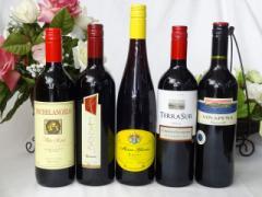 セレクション 赤ワイン 5本セット ( イタリアワイン 2本 チリワイン 1本 ドイツワイン 1本 スペインワイン 1本)計750ml×5本 お歳暮 クリ