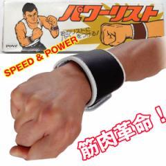 パワーリスト(両腕1組)(負荷,重り,筋トレ,トレーニングギア,ナマリ,手首,巻く,ウェイトトレーニング,250g,最大750g装着)