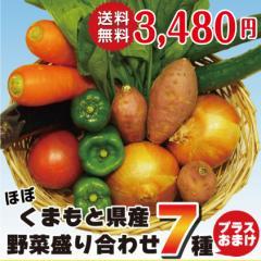 新鮮野菜詰め合わせ 7品+おまけつき 送料込