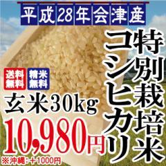 平成28年 会津産 特別栽培 コシヒカリ 玄米 30kg ...